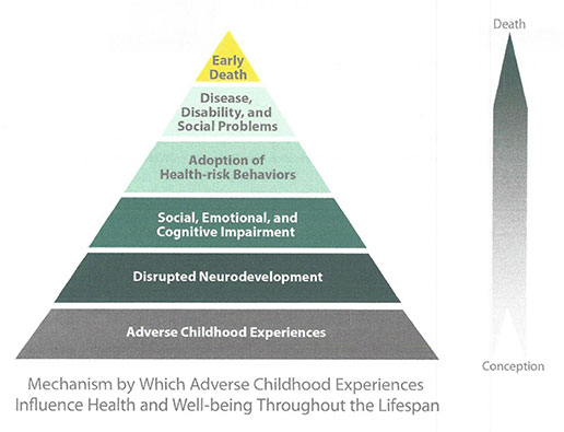 Mechanism by Which Adverse Childhood Experiences Influence Health and Well-being Throughout the Lifespan